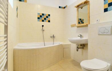 Boarding house Mysi dira Cesky Krumlov - bathroom